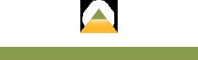 Myrtle Beach D logo